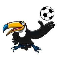 Cartoon toucan bird player with ball vector