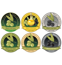 collection olives vector image
