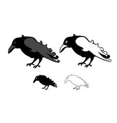Crows style unique vector