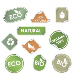 eco recycling labels vector image