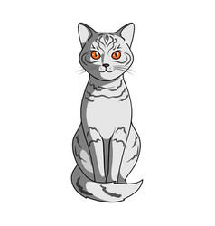gray catanimals single icon in cartoon style vector image