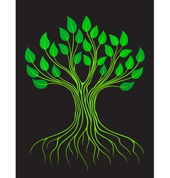 Green stylized tree vector image