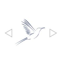 Hummingbird icon vector