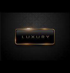 luxury black label with golden frame sparks on vector image