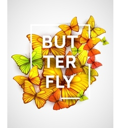 The modern poster with beautiful butterflies vector image