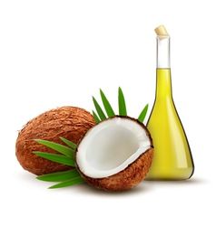Coconut with oil vector image