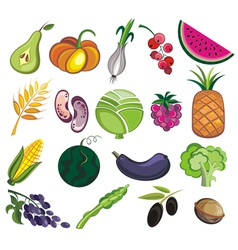 Collection of various fruits and vegetables vector