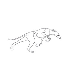 dog running lines vector image