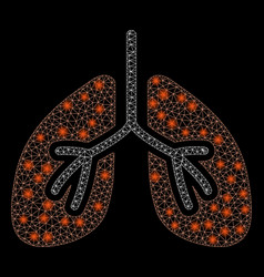 Flare mesh 2d lungs with flare spots vector