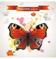 peacock butterfly vector image
