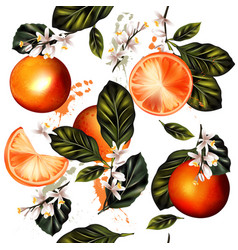 seamless pattern with realistic lemon oranges vector image