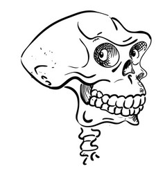 cartoon image of ancient skull vector image