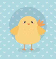 Cute chick animal farm character vector