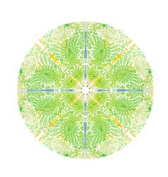 green mandala with turkish ornament lotus vector image