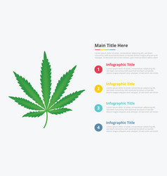 Marijuana leaf infographic with some point title vector