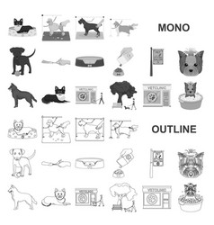 Pet monochrom icons in set collection for design vector
