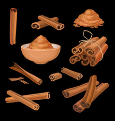 set of cinnamon sticks and powder aromatic vector image