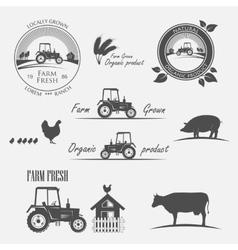 Fresh Farm Produce vector image vector image