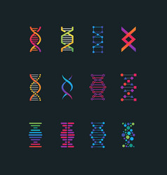 human dna research technology symbols spiral vector image vector image