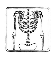 blurred silhouette with x-ray of bones vector image