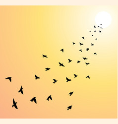 flock of flying birds towards bright sun vector image