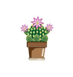 Four cactus in a pot vector