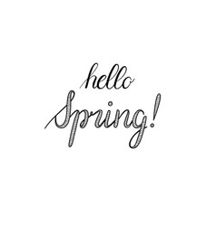Hello spring calligraphy hand-drawn vector