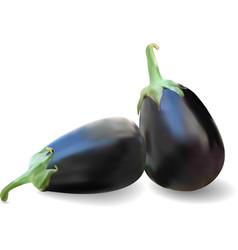 Realistic eggplants vector