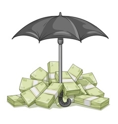 Umbrella protecting bundles vector image