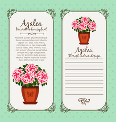 Vintage label with potted flower azalea vector