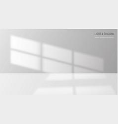 window light background vector image
