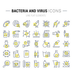 set flat line icons bacteria and virus vector image