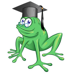 a happy smiling frog wearing a black graduate vector image