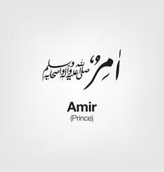 Amir vector