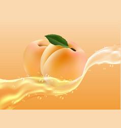 delicious juicy apricot in spray of juice vector image