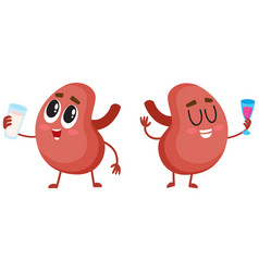 Pair of cute and funny healthy human kidney vector