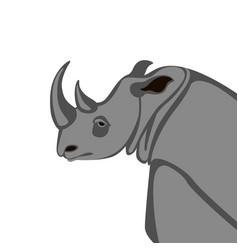 rhino head flat style vector image