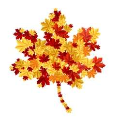 Maple leaf consisting of other leafs vector image