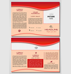 trifold brochure template with red waves vector image