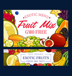 Exotic pineapple banana grapes and other fruits vector