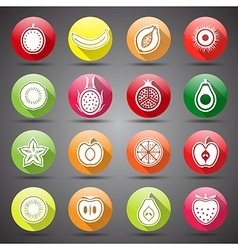 Fruits icons5 vector