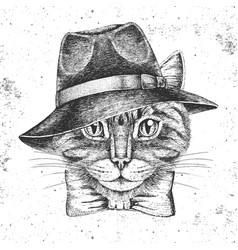Hipster animal cat in hat hand drawing muzzle vector