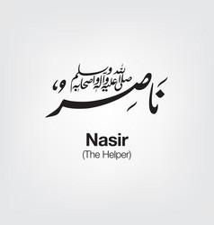 Nasir vector