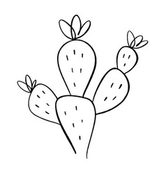 simple icon cactus one line drawing house or vector image