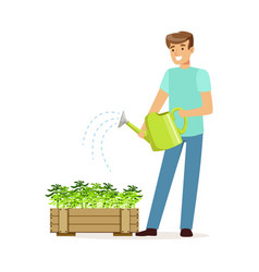 Young smiling man watering plants in wooden box vector