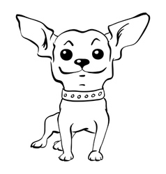 sketch funny chihuahua dog sitting vector image vector image