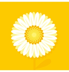 big daisy on yellow background vector image vector image