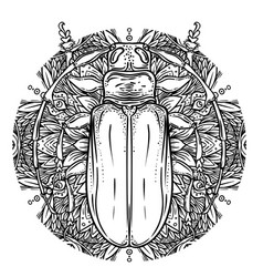 black and white beetle over sacred geometry vector image