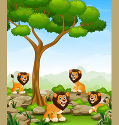 Cartoon lions group in the jungle vector
