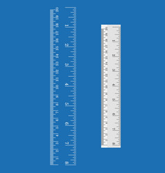 Ruler and measurement vector